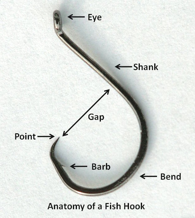 """Anatomy of a Fish Hook"" Diagram, source: Wikipedia"
