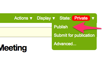 screenshot of publish button